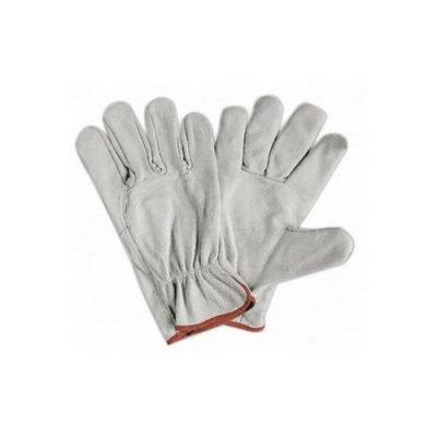 Argon Glove White