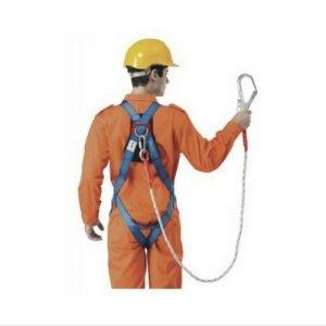 Body Harness Lanyard & Large Hook